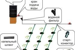 Схема системы капельного полива своими руками