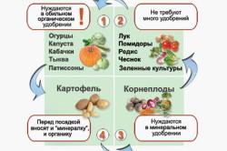 Пример севооборота в зависимости от количества удобрений.