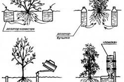 Схема ручного капельного полива