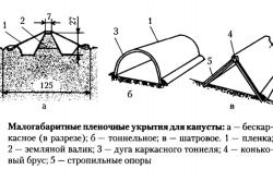 Схема укрытий парников для капусты