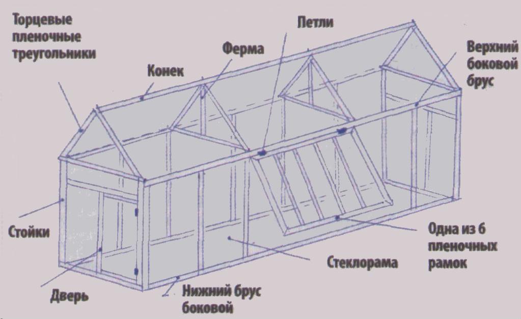 Как построить теплицу из оконных рам схема