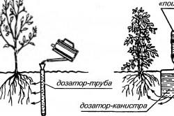 Простая система внутрипочвенного полива растений