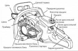 Схема устройства бытовой бензопилы