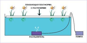Гидропоника своими руками плавающая платформа Трамадол  отзывы САО