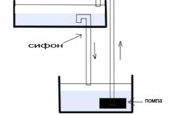 Принцип гидропоники