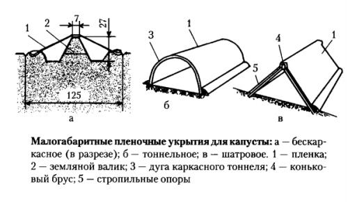 Схема малых укрытий для капусты